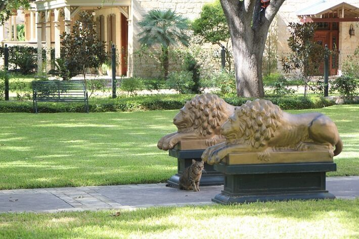 classic lion statues lining pathway | SAWS Garden Style Conservation Water Saver San Antonio Texas