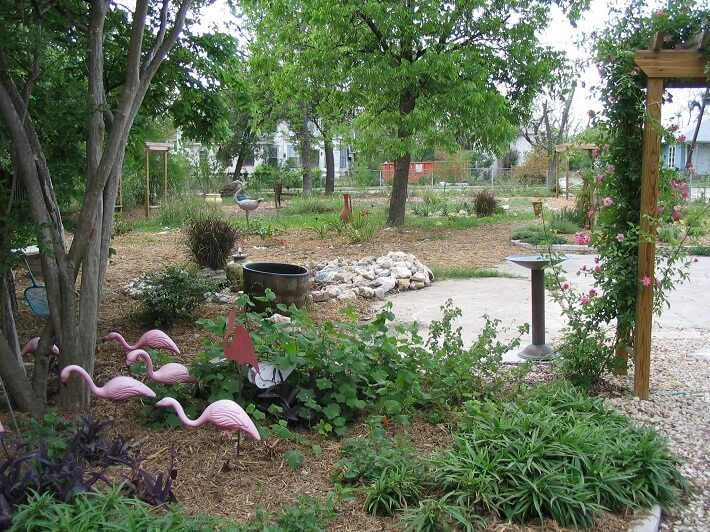 flock of plastic pink flamingos in yard | SAWS Garden Style Conservation Water Saver San Antonio Texas