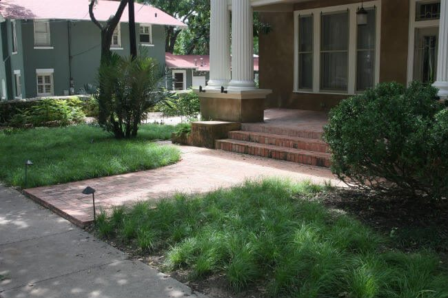 water saver solution to grass growing in | SAWS Garden Style Conservation Water Saver San Antonio Texas