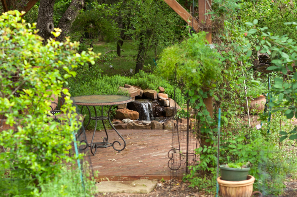 cottage garden vines and seating area