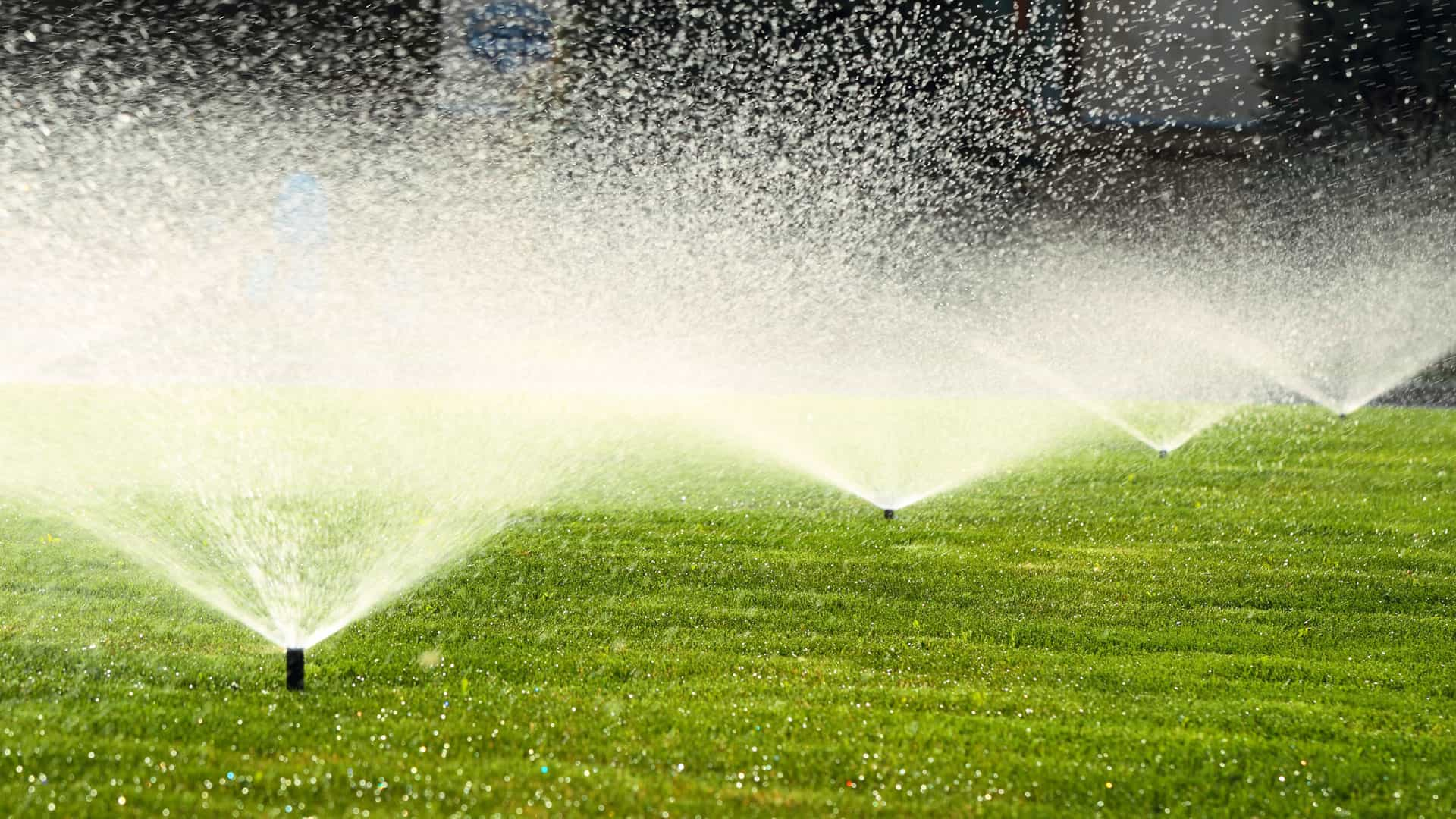 Commercial Irrigation Sprinklers | SAWS Garden Style Conservation Water Saver San Antonio Texas