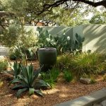 relaxing backyard with cactuses and sage colored concrete walls