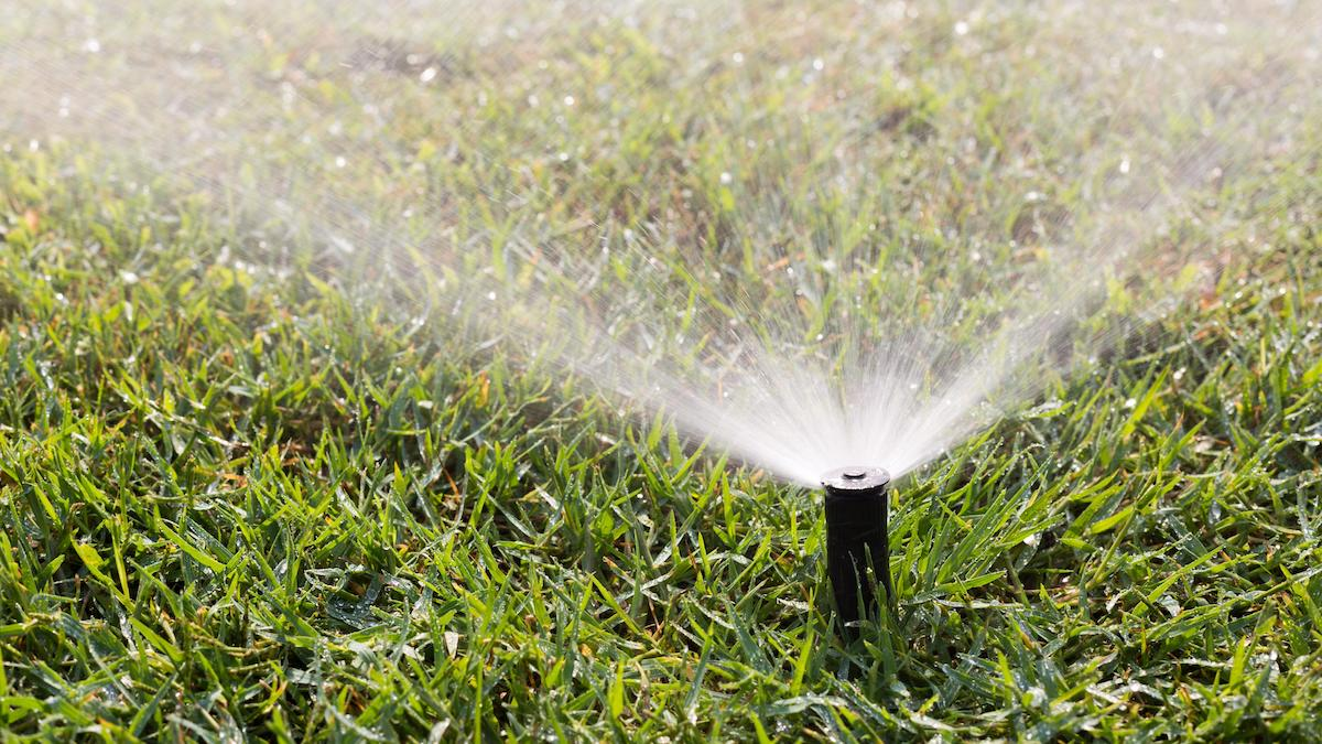 Residential Irrigation Design Rebate - Sprinkler Working on a Green Grass Lawn | SAWS Garden Style Conservation Water Saver San Antonio Texas