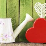 watering can heart