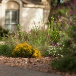 WaterSaver Landscape flower bed.