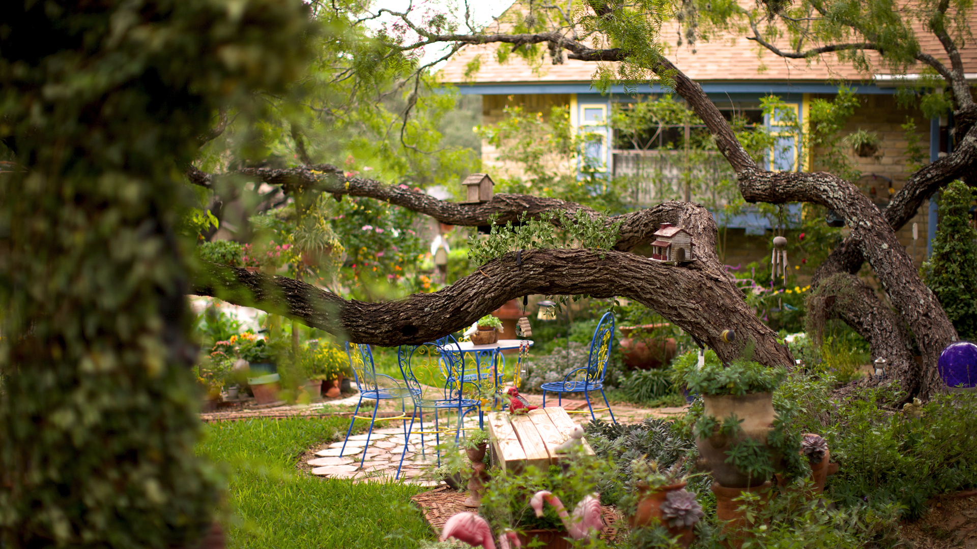 Comfortable outdoor spaces for people and wildlife